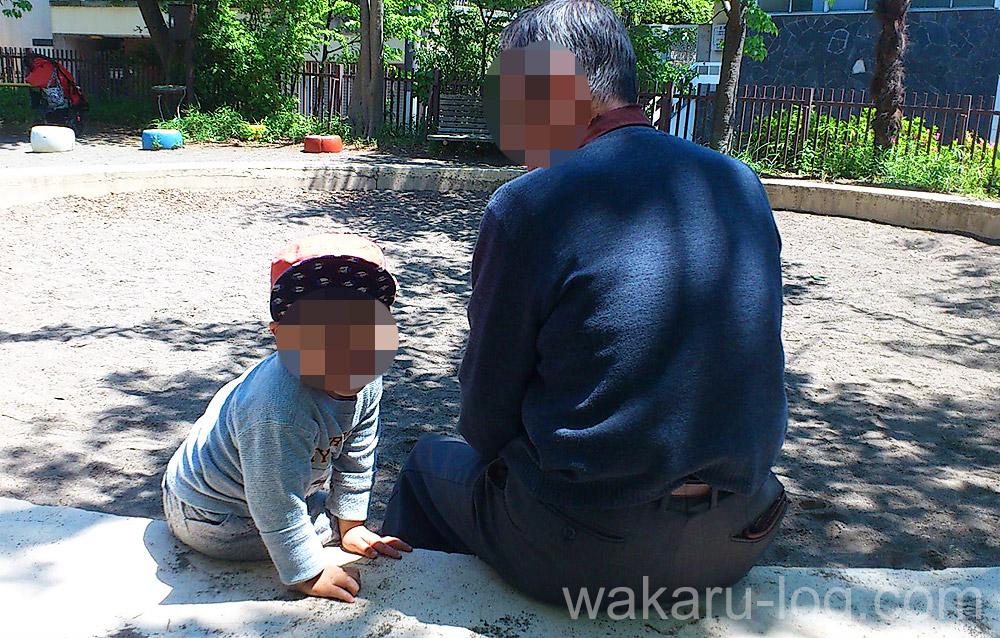 f:id:wakaru-web:20190906080417j:plain