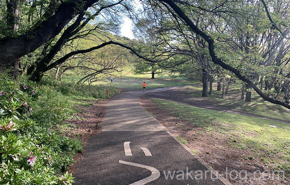 f:id:wakaru-web:20200607211616j:plain