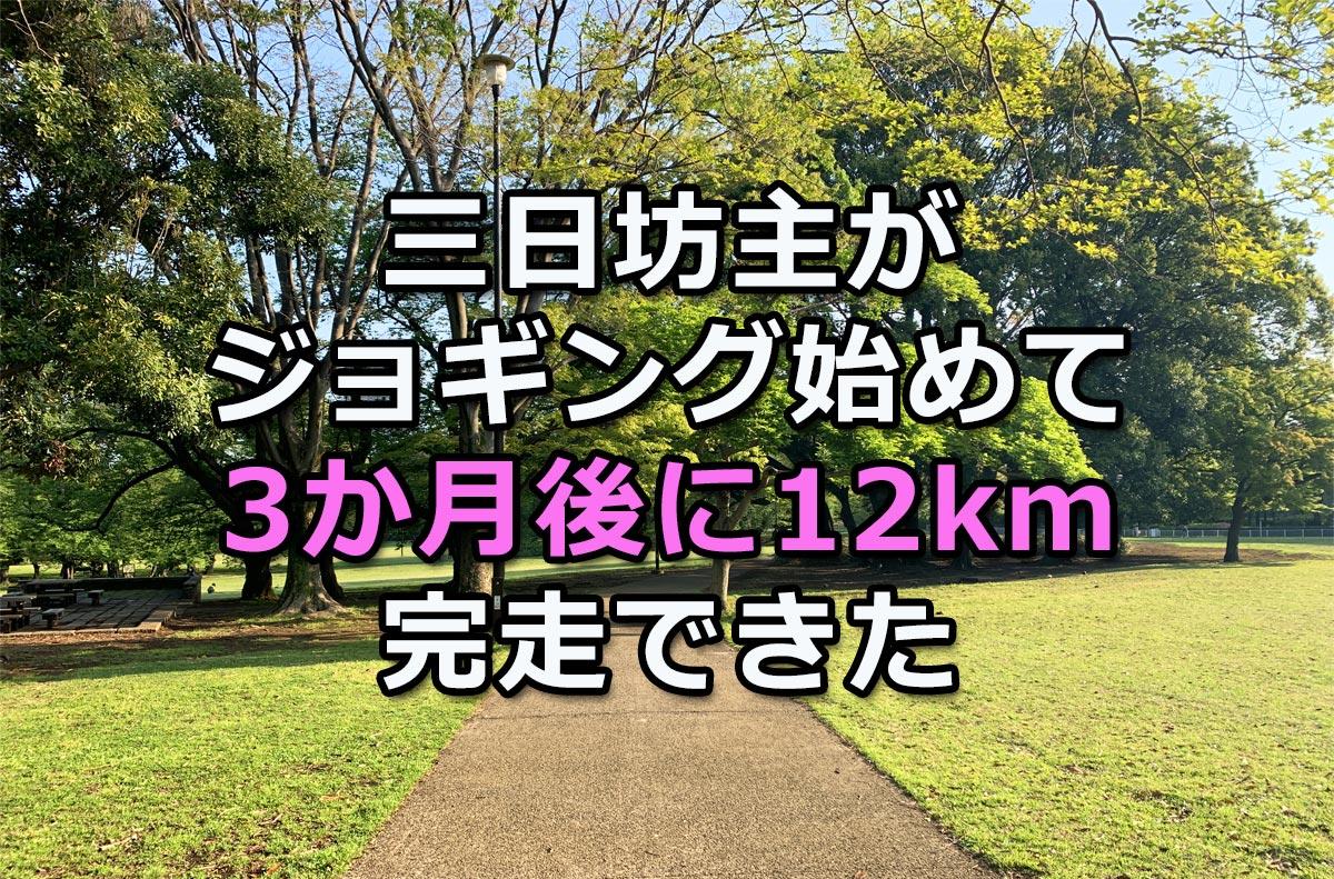 f:id:wakaru-web:20200608103551j:plain