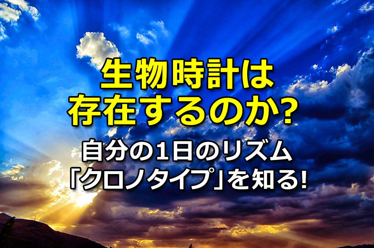f:id:wakaru-web:20200804184937j:plain