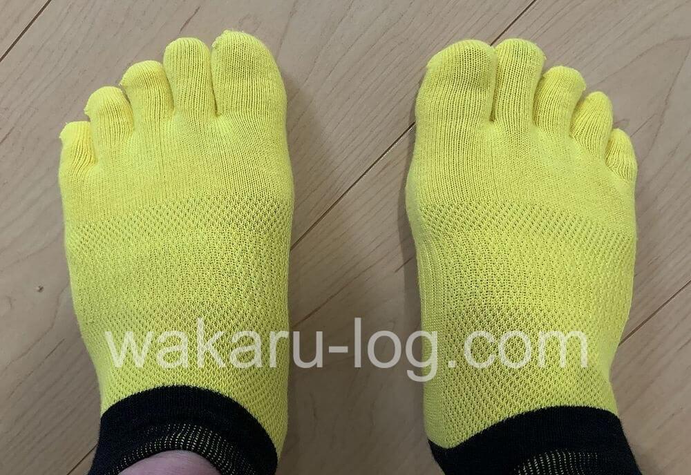 f:id:wakaru-web:20200902184614j:plain