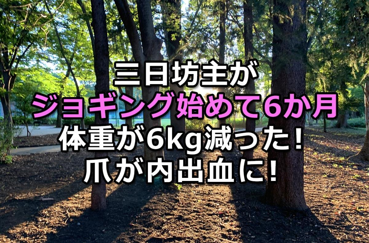 f:id:wakaru-web:20200903095606j:plain