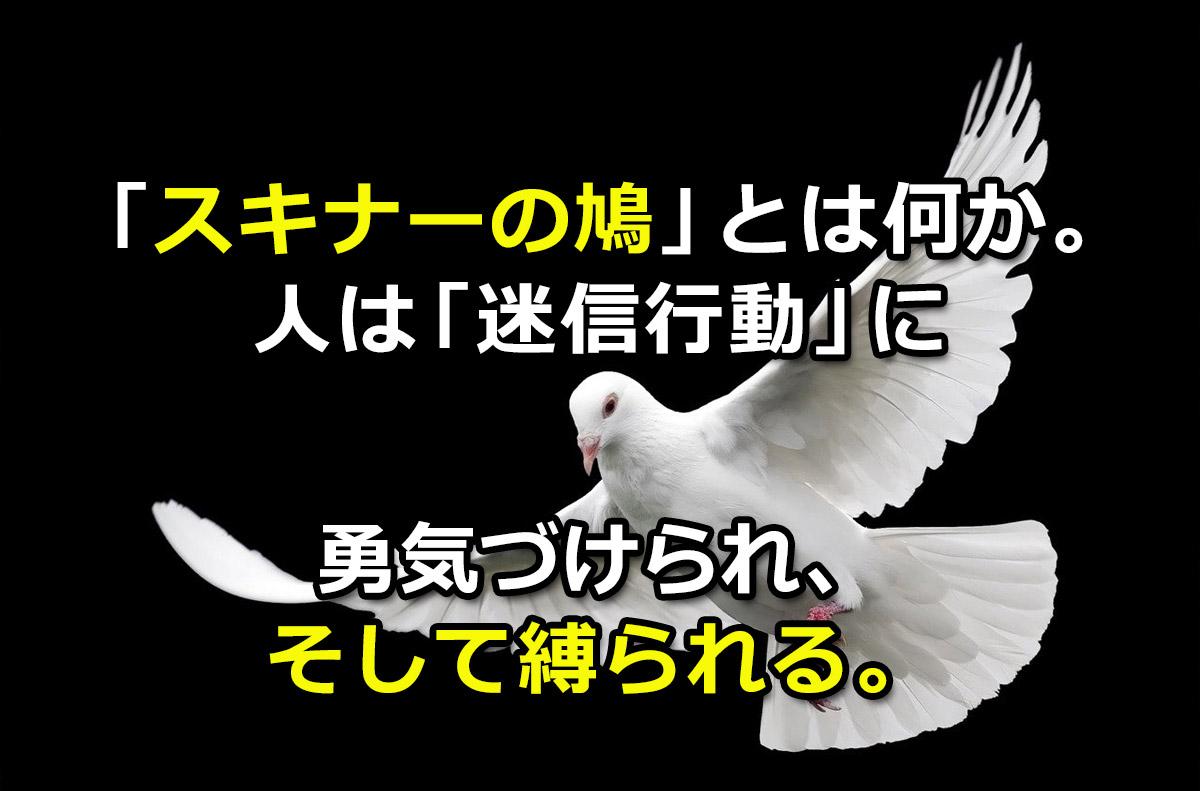 f:id:wakaru-web:20200914215135j:plain