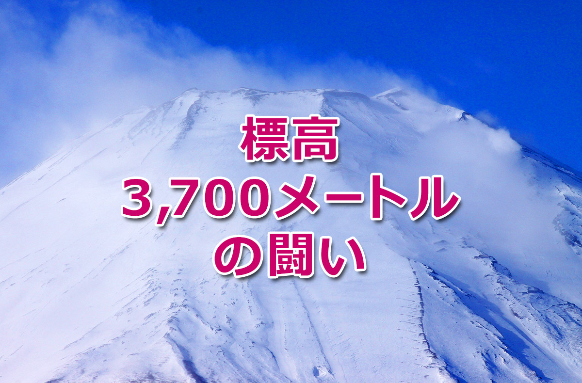 f:id:wakaru-web:20201109093637j:plain