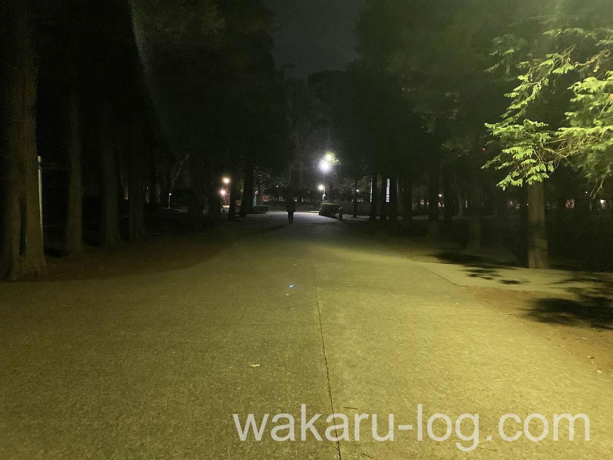 f:id:wakaru-web:20210307144949j:plain
