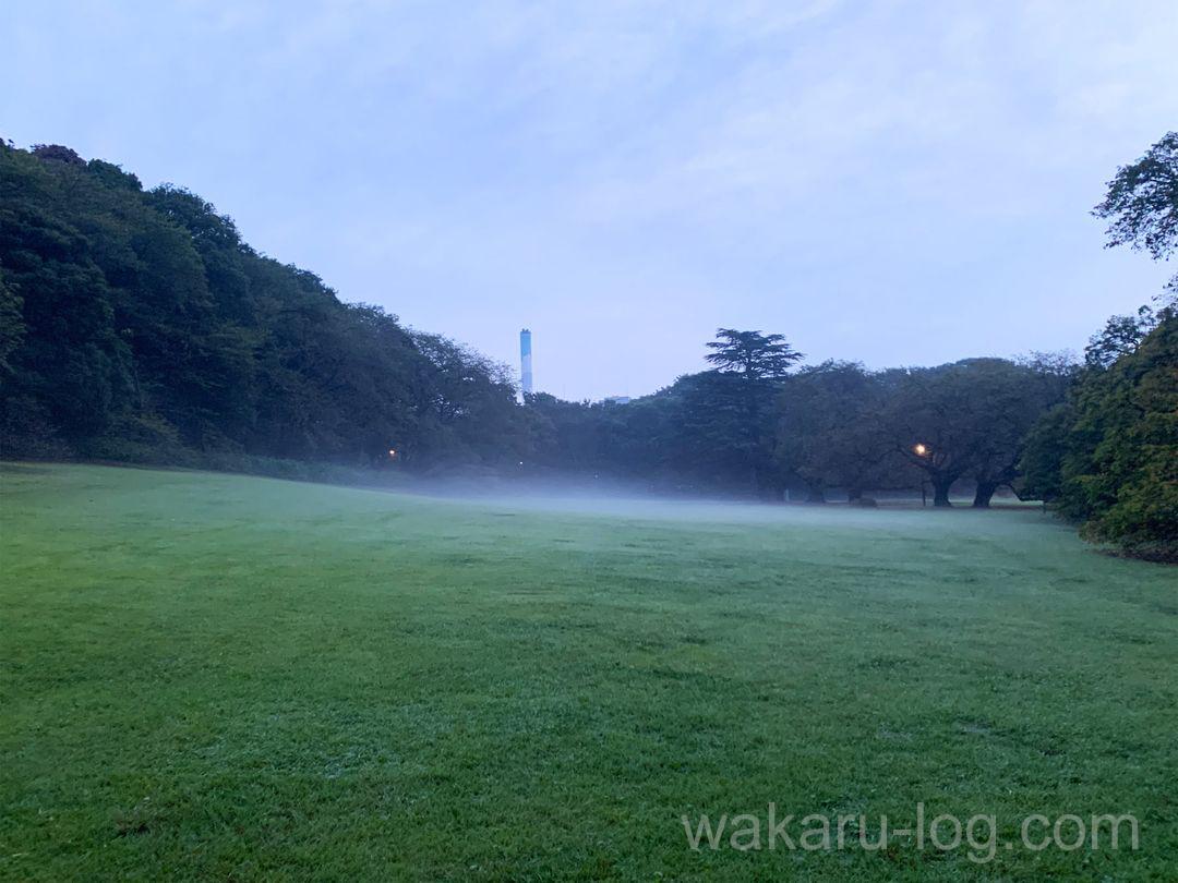 f:id:wakaru-web:20211002155320j:plain