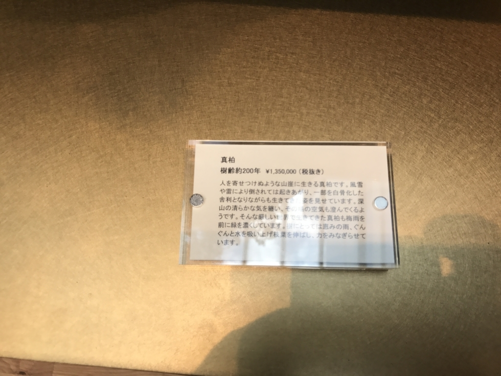 f:id:wakasa123:20170612143102j:plain