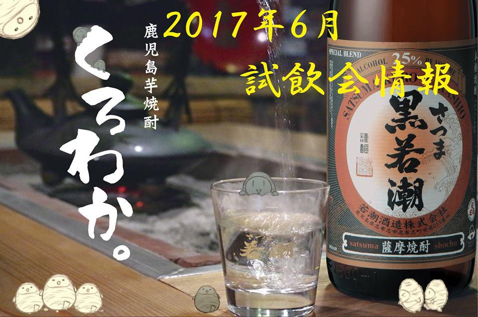 f:id:wakashio:20170611191342j:plain