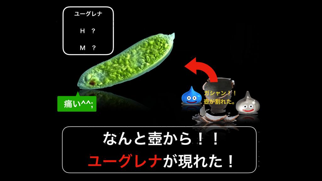 f:id:wakawakamomomomo:20170622115445p:plain