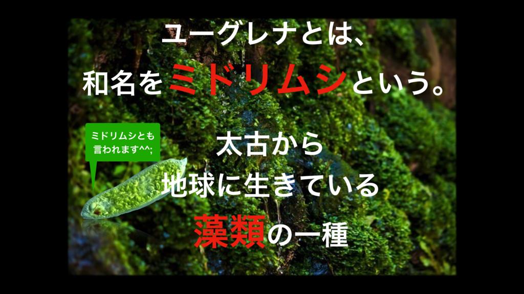 f:id:wakawakamomomomo:20170622115730p:plain