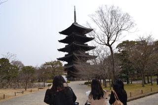 f:id:wakazemi:20130226134153j:image
