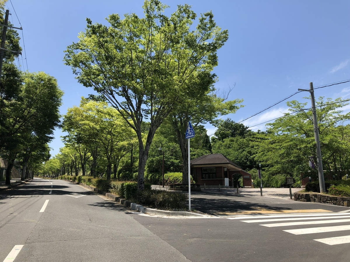 f:id:wakazemi:20190522120619j:plain