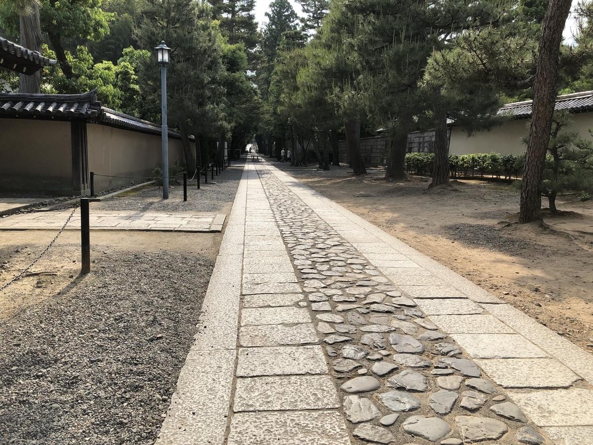 f:id:wakazemi:20190526152413j:plain