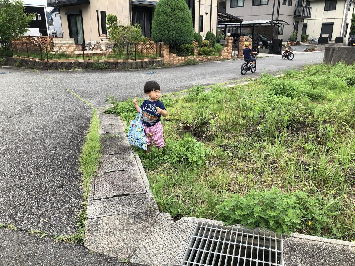 f:id:wakazemi:20190721125617j:plain
