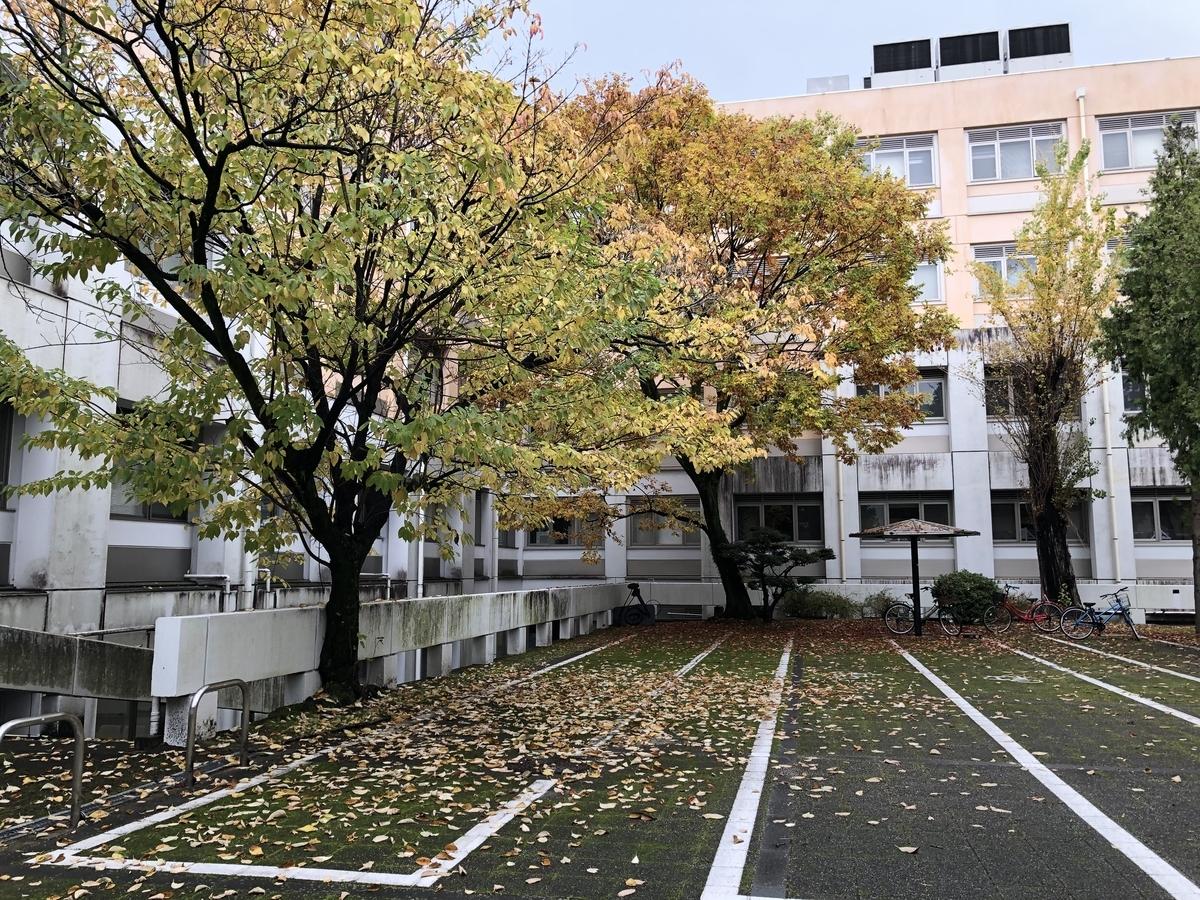 f:id:wakazemi:20191202120514j:plain