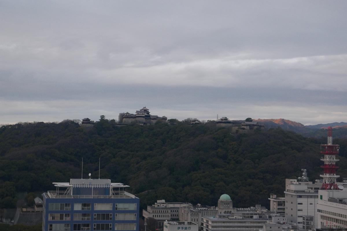 f:id:wakazemi:20200128171832j:plain