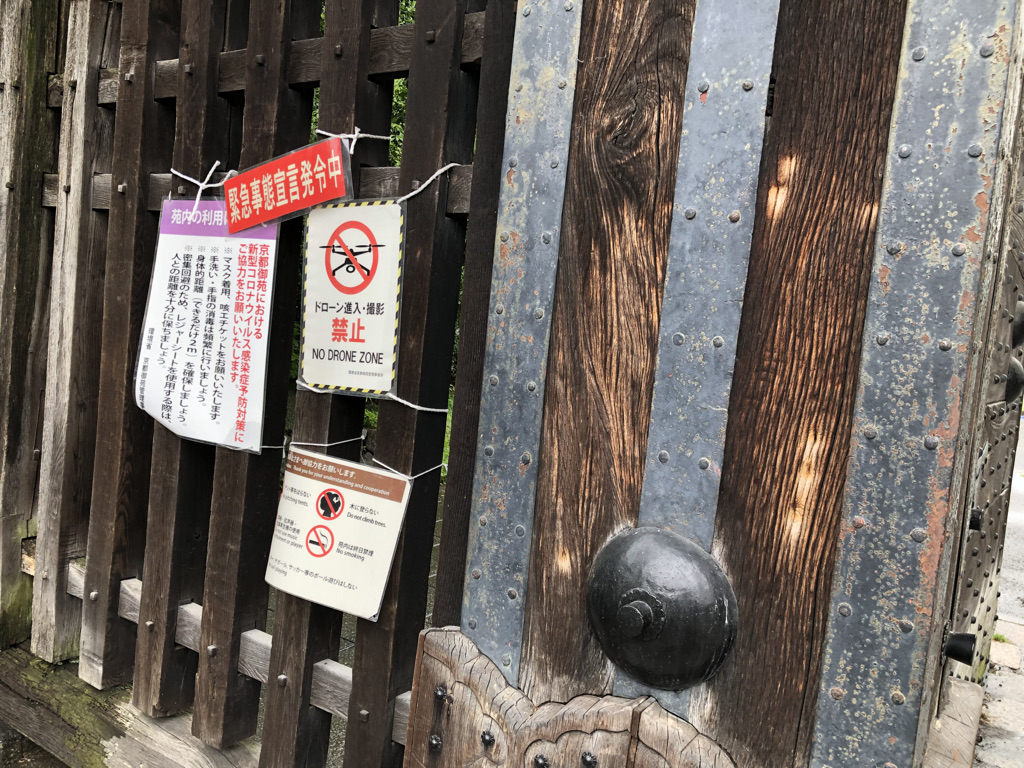 f:id:wakazemi:20210619112014j:plain