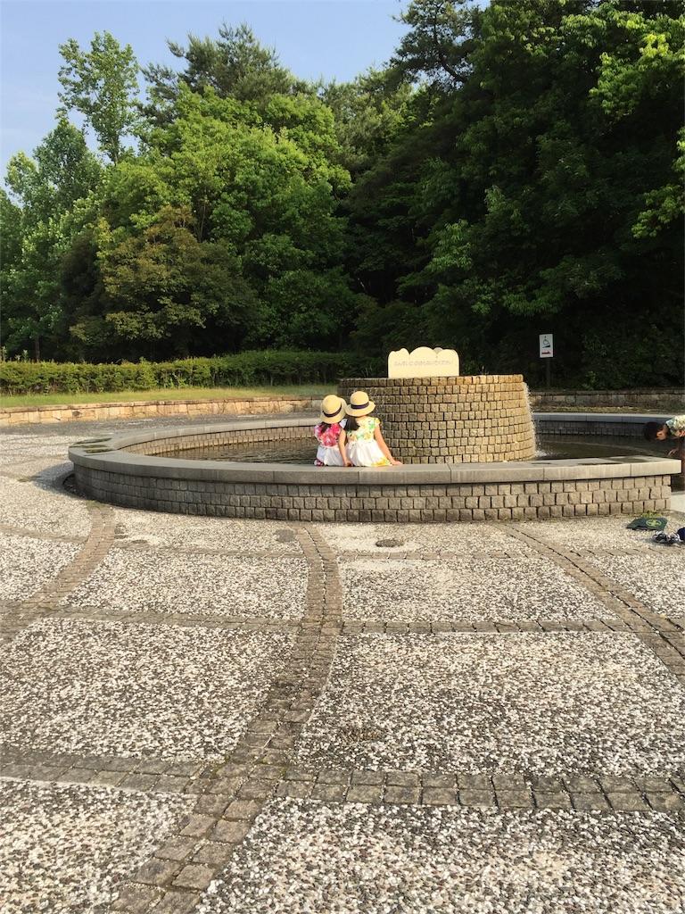f:id:wakiwaki117:20170611161944j:image