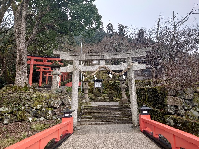 f:id:wakudokihappy:20200226150040j:image