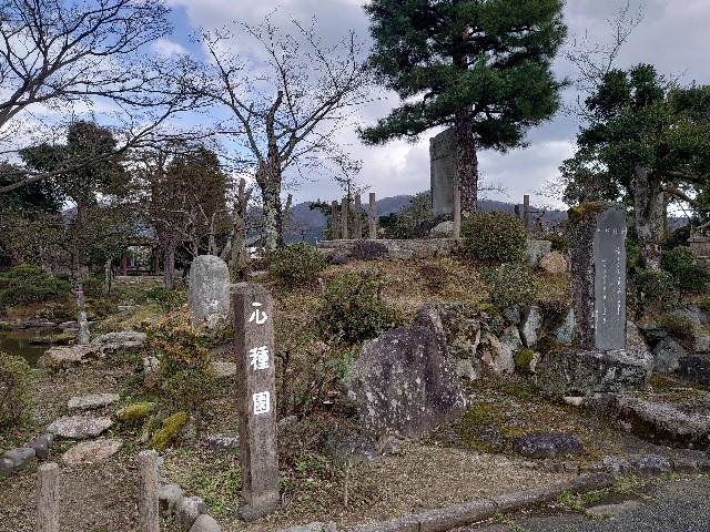 f:id:wakudokihappy:20200325152706j:image