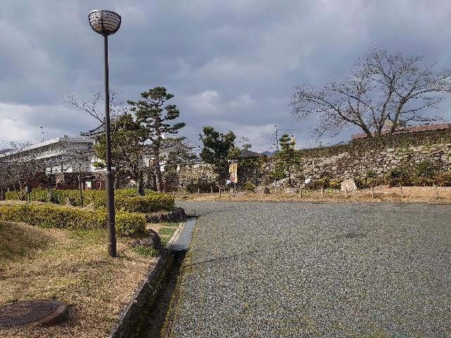 f:id:wakudokihappy:20200325153222j:image
