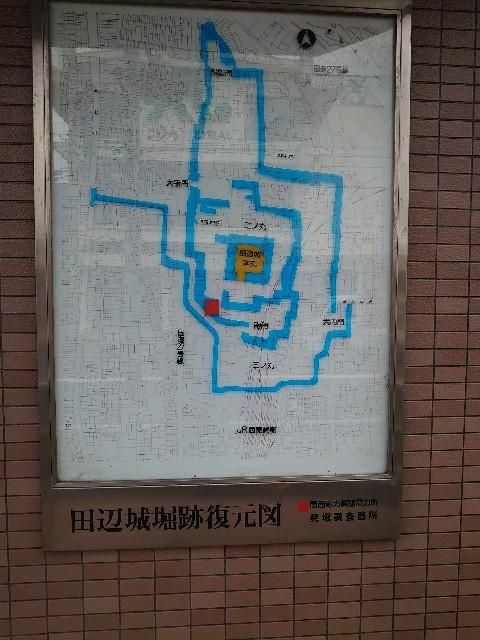 f:id:wakudokihappy:20200326152310j:image