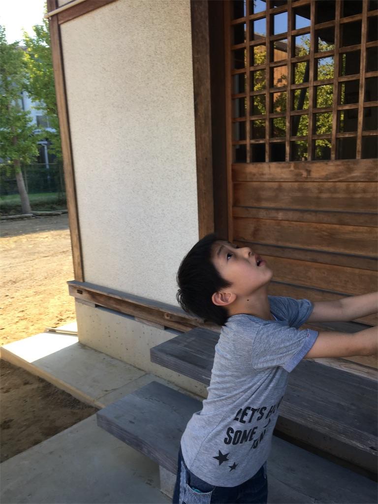 f:id:wakutera:20191001190926j:image