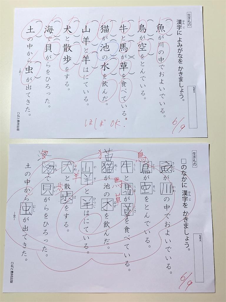f:id:wakutera:20210612084948j:image