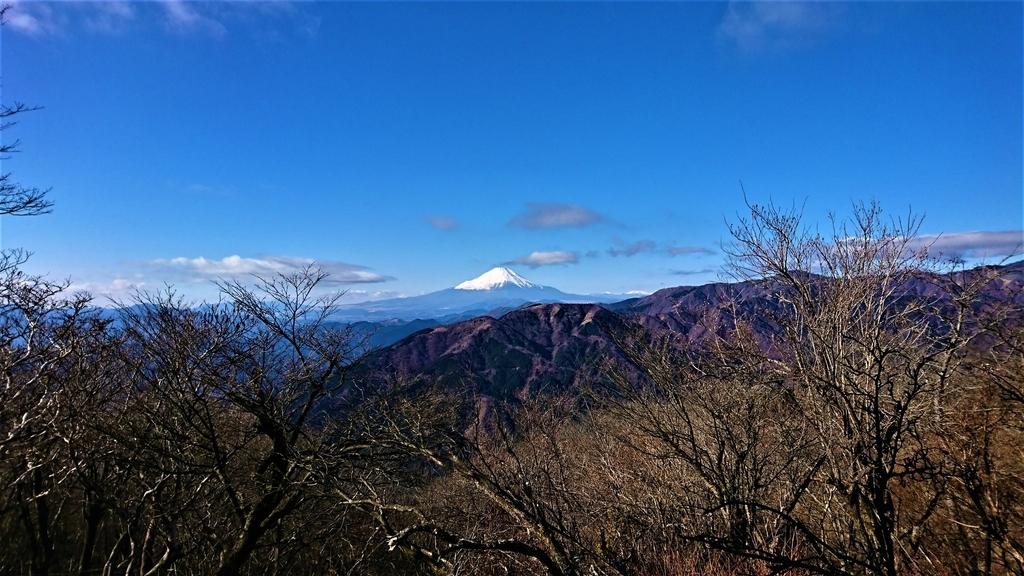 f:id:wakuwaku-blue:20190105124535j:plain