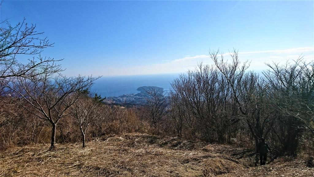 f:id:wakuwaku-blue:20190114194233j:plain