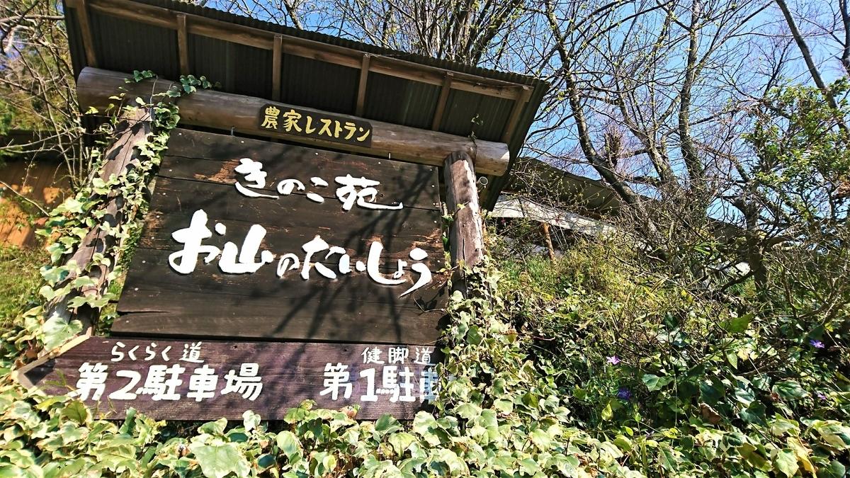 f:id:wakuwaku-blue:20190317120200j:plain