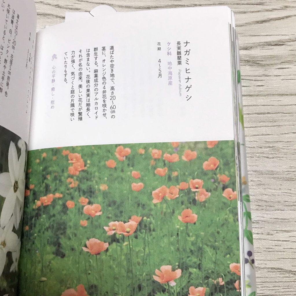 f:id:wakuwaku-v:20180904124816j:plain