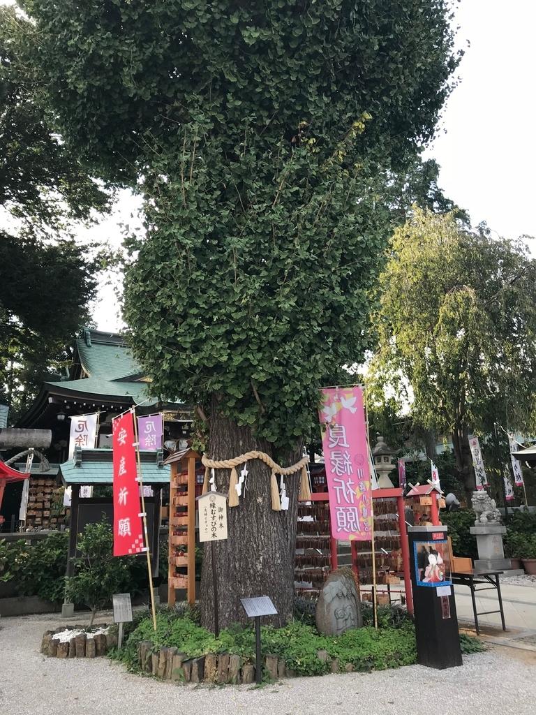 f:id:wakuwaku-v:20180919191210j:plain