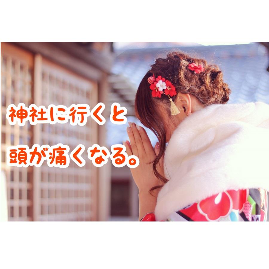 f:id:wakuwaku-v:20190105210839p:plain