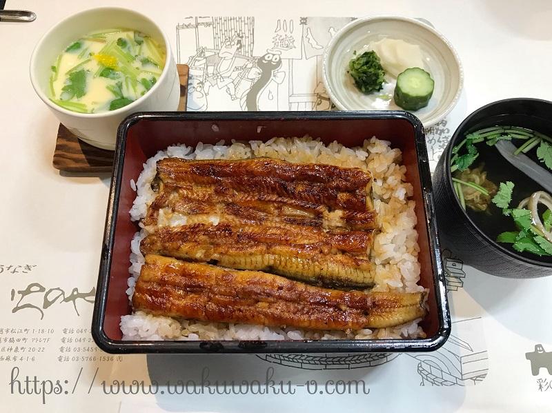f:id:wakuwaku-v:20190126184442j:plain