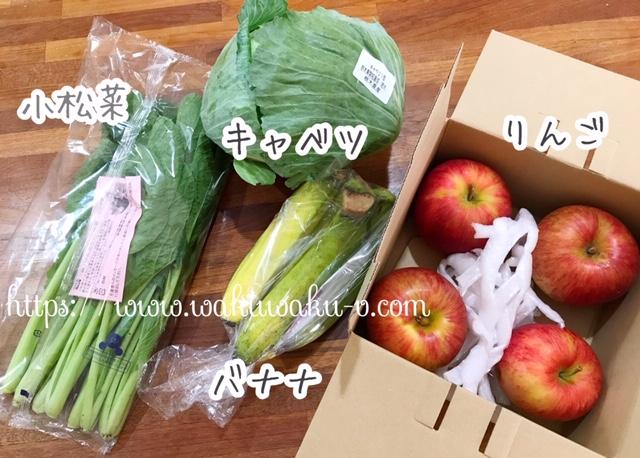 f:id:wakuwaku-v:20190129131932j:plain