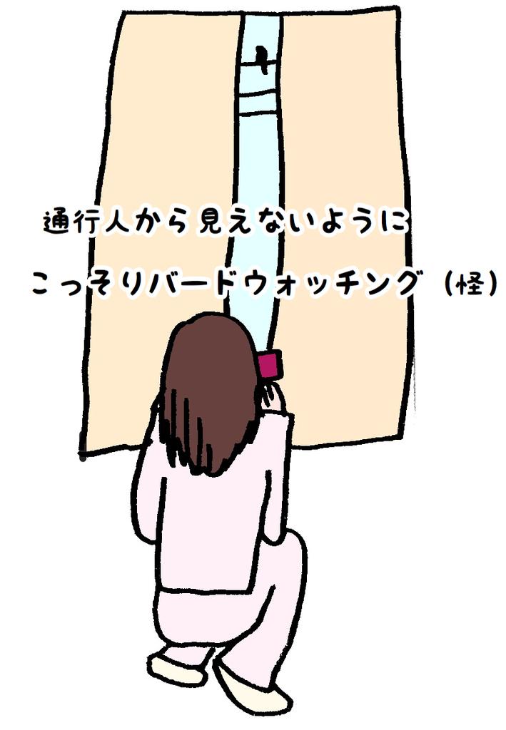 f:id:wakuwaku-v:20190228154719j:plain