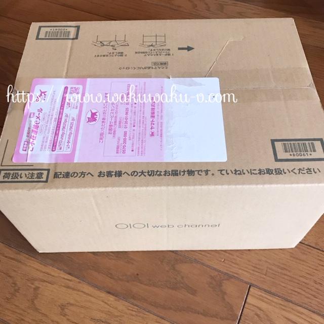 f:id:wakuwaku-v:20190301182325j:plain