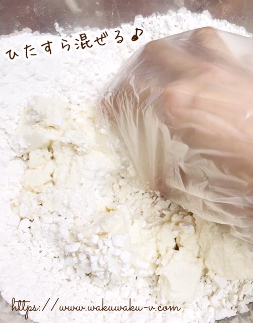f:id:wakuwaku-v:20190305143030j:plain