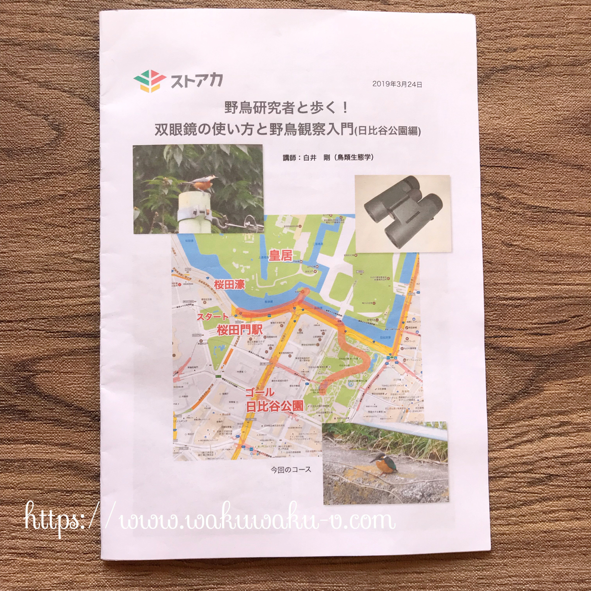 f:id:wakuwaku-v:20190328142633j:plain