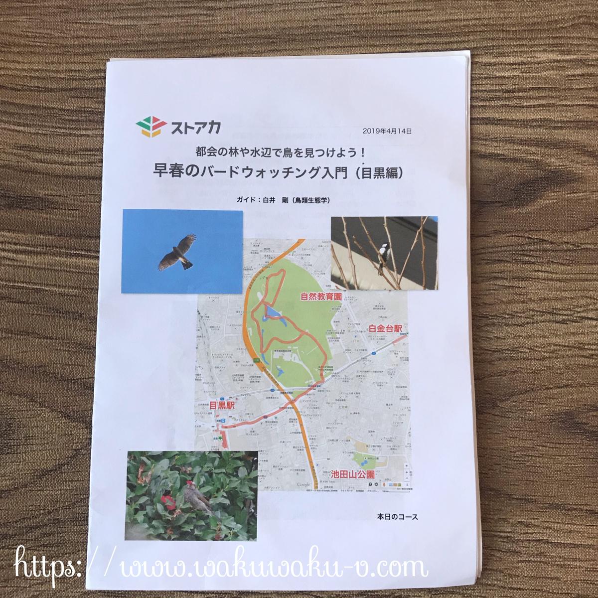 ストアカ 野鳥 おすすめ 都内 バードウォッチング  初心者 探鳥会