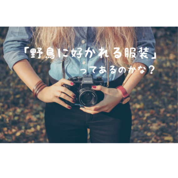f:id:wakuwaku-v:20190625132421p:plain