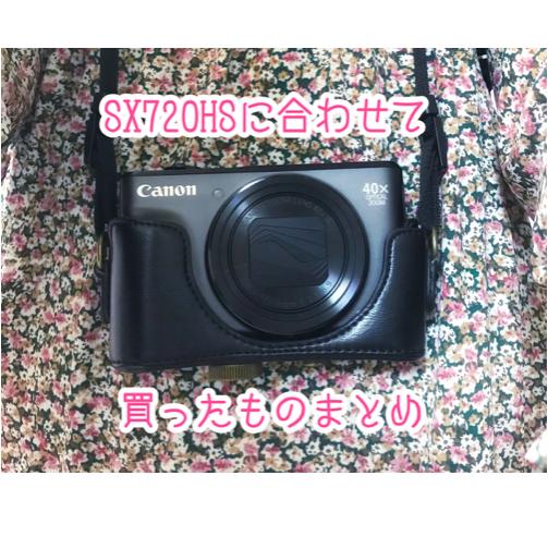 SX720 hs キヤノン レビュー 小さい デジカメ 野鳥撮影 おすすめ