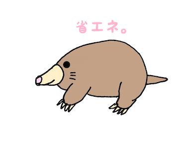 f:id:wakuwaku-v:20190828092128j:plain
