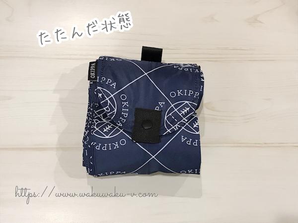f:id:wakuwaku-v:20190910184843j:plain