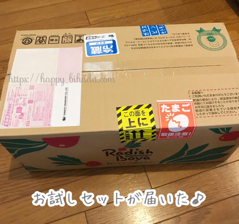f:id:wakuwaku-v:20191124182952p:plain