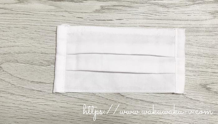 f:id:wakuwaku-v:20200604175858j:plain