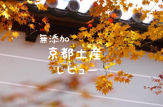 f:id:wakuwaku-v:20201215125510p:plain
