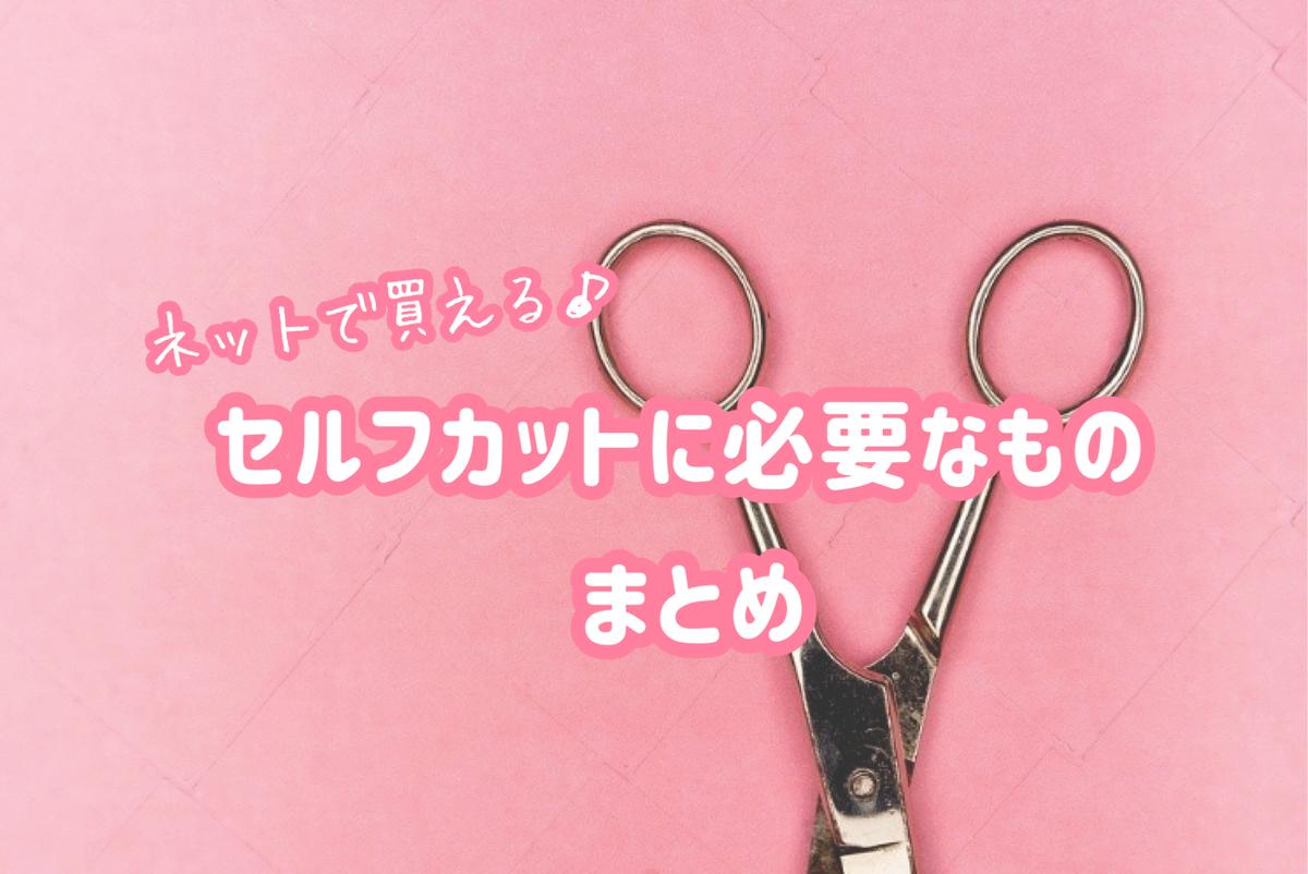 f:id:wakuwaku-v:20210927140828j:plain