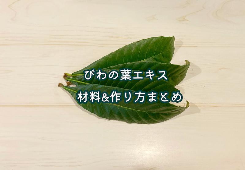 f:id:wakuwaku-v:20210928112221j:plain